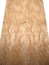 Birke Maser Furnier Maserbirke Intarsie 2W 99x15/16cm 2 Bl
