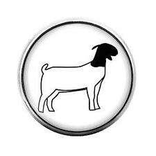 Dome Candy Snap Charm Gd1314 Farm Animals Sheep- 18Mm Glass