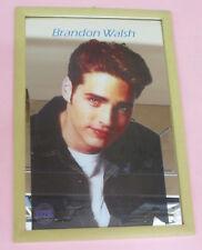 Specchio mirror vintage 90 BRANDON WALSH beverly hills 90210 22x32 cm no dvd vhs