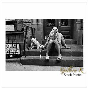 ELLIOTT ERWITT NEW YORK CITY DOGS LTD ED - HIS LAST SIGNED MAGNUM  SQUARE PRINT!