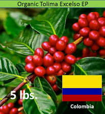 Organic Green Coffee Beans Colombia Tolima Excelso EP 5 lbs.