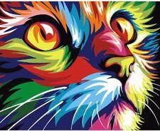 Paint By Numbers Kit Colorful Cat Van-Go 40CMx50CM Canvas