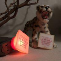 2 Square Advertising Night Lights Vintage Orange Glow Agent MFA Insurance Peters