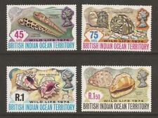 BRITISH INDIAN OCEAN TERR. 1974 SG58/61 Wildlife Shells Set MNH (JB10541)