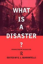 What Is a Disaster? : A Dozen Perspectives on the Question (1998, Paperback)