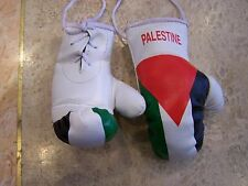 Palestine Flag Mini Boxing Gloves Pair Car Hanging Rear Mirror Accessory