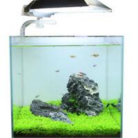 Fish Tank Aquarium Plants Seeds Aquatic Water Grass Foreground Plants P hf