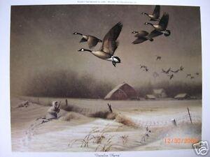 """""""Fenceline Flyway""""   John Green   MINT S/N Ltd. Ed."""