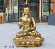 Tibet Buddhist Fane Bronze Gild dragon clothing Sakyamuni Buddha Statue