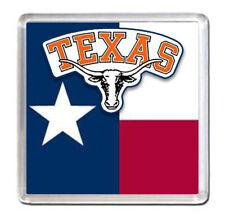 Texas USA Fridge Magnet Travel Souvenir