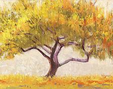 Shirley Novak: Apricot Tree Fertig-Bild 55x70 Wandbild Bäume Baum Natur Deko