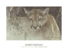 WILDLIFE ART PRINT Tropical Cougar by Robert Bateman 18x24 Mountain Lion Poster