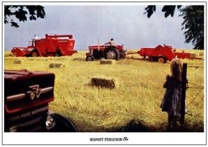 Vintage Massey Ferguson 165 515 Combine Tractor Poster Brochure Picture Art (A3)