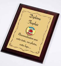 Trophée Diplome a personnaliser ALU et BOIS 31x23 cm