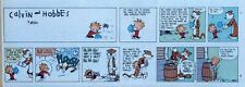 Calvin and Hobbes by Watterson - color Sunday comic page - VFn - July 1, 1990