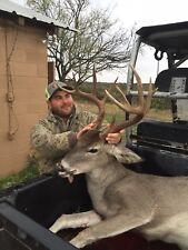 Texas White Tail Deer Hunts!!!