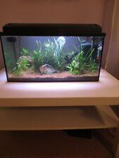 Eheim Aquarium komplett Set 54 LED, Süßwasser, Set 60x30x30cm, 54 Liter NP 250€