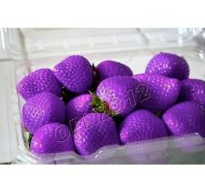 200x Purple Strawberry Grow Seeds Delicious Fruit Plant Home Garden Everbearing