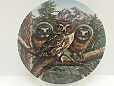 "Knowles Limited Ed. Vast View: Saw-Whet Owls Plate Includes Cert of Auth 8.25"" D"