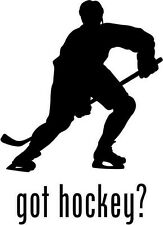 "Got Hockey Car Window Decor Vinyl Decal Sticker- 6"" Tall White"