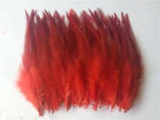 DIY HOT Beautiful 50pcs Natural rooster tail feathers 10-15cm/4-6inch 31 Colors