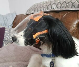 Optivisor For Dogs Eye Protection Size Small