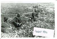 WW 2 Russland Feldzug battlefield 14.08.42 Kampf  Nikitskoje  Pz. P Kompanie 693