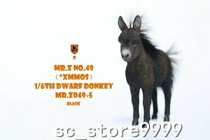 MR. Z 1:6 MRZ049-5 Dwarf Donkey Resin Animal Figure Simulation Scene Collection