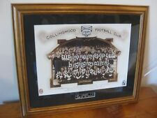 COLLINGWOOD - Team Of The Century Framed Picture (1897 - 1997) Ready To Hang