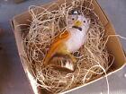 New 3D Dresden Paper Halloween Ornament Dapper Owl Top Hat Monocle Bow Tie Stump