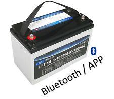 LiFePO4 12V 100AH Lithium Akku mit BMS Bluetooth für Camper Boot Solar Wohnmobil