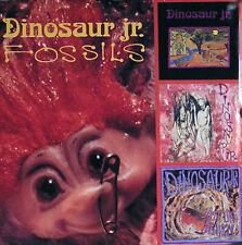 Dinosaur Jr 1991 Fossils Catalog Original Promo Poster
