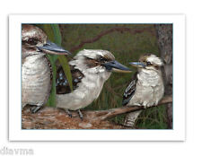 © ART Kookaburra Kingfisher Australian Wildlife BIRD Original Artist Print by Di