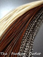 Lot 20 Grizzly Solid Feathers Hair Extensions saddle long skinny real Natural NB