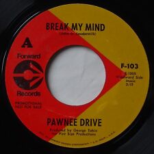 PAWNEE DRIVE: Break my Mind GARAGE psych 45 on FORWARD super scarce!
