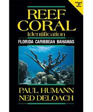 Reef Coral Identification 2nd Edition Florida, Caribbean and Bahamas