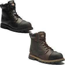 Dickies Crawford Safety Work Boots (Sizes 6-12) Men's Steel Toe Cap Shoes