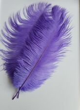 Ostrich Feathers (Pack of 4) Mauve Coloured Feathers approx 40 cms long