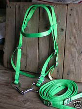 "NEON or LIME GREEN ""Horse"" COMPLETE Nylon Bridle & Bit...made in USA"