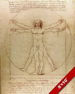 LEONARDO DA VINCI Vitruvian Man Nude Proportions 8X10 REAL CANVAS GICLEE PRINT