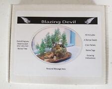 Bonsai Tree Kit Personalised Redwood grow your own tree gift set, starter kit UK