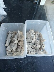 Dry Reef Base Rock Aquarium 51lbs / lightweight porous. Medium/large.with love