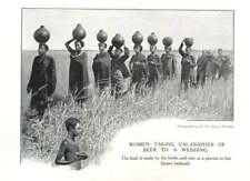 1910 South Africa, Women Taking Calabashes Of Beer To A Wedding