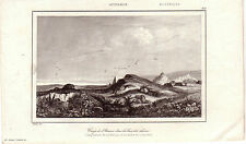 Australia Australien Camp de L'uranie bay de Chiens Orig Stahlstich 1850 Danvin