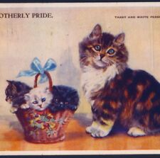"MABEL GEAR...PERSIAN MOTHER CAT,KITTENS IN BASKET,""MOTHERLY PRIDE"" OLD POSTCARD"
