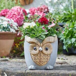 Smart Garden Woodstone Owl Planter