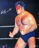 Bruno Sammartino Signed Autographed 16X20 Photo Vintage Bloody Face OA