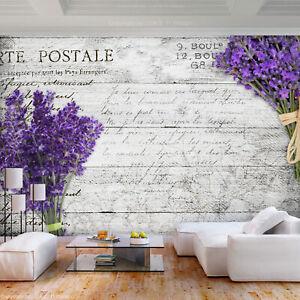 -Landschaft Violett Gebirge Wiese Feld Lavendel VLIES Fototapete-PANORAMA- 4598V