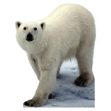 POLAR BEAR Lifesize CARDBOARD CUTOUT Standup Standee Poster Prop Arctic FREESHIP