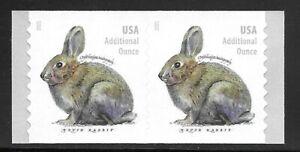 U.S. Scott #5545 (20 cent) Brush Rabbit 2021 Coil Pair Extra Liner MNH XF